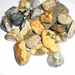 Ocean Jasper Polished Gemstone