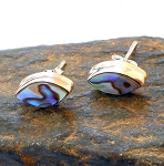 Abalone Shell Sterling Silver Post Earrings